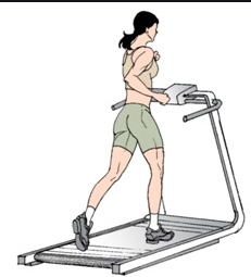 how to pick the best proform treadmill